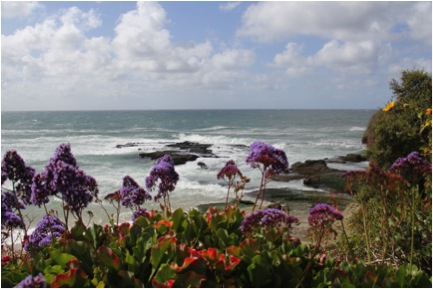 I Love The Beach. Winter, Spring, Summer Or Fallu2014it Doesnu0027t Matter If Itu0027s  Windy Or Rainy Or 100 Degreesu2014if I Have The Chance Iu0027ll Go.